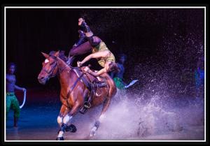 Cavalia_horse